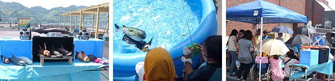 学生が生物ロボットを使ったボランティア活動を実施しました