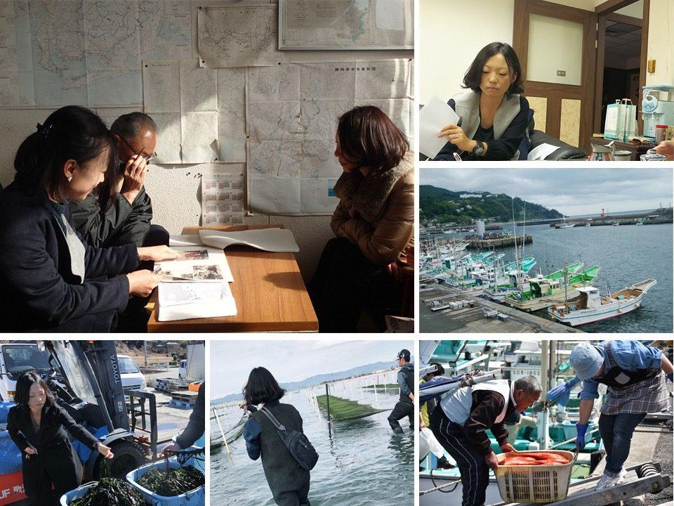 新沿岸域管理のあり方:漁業から海業へ、漁業管理から沿岸域管理へ