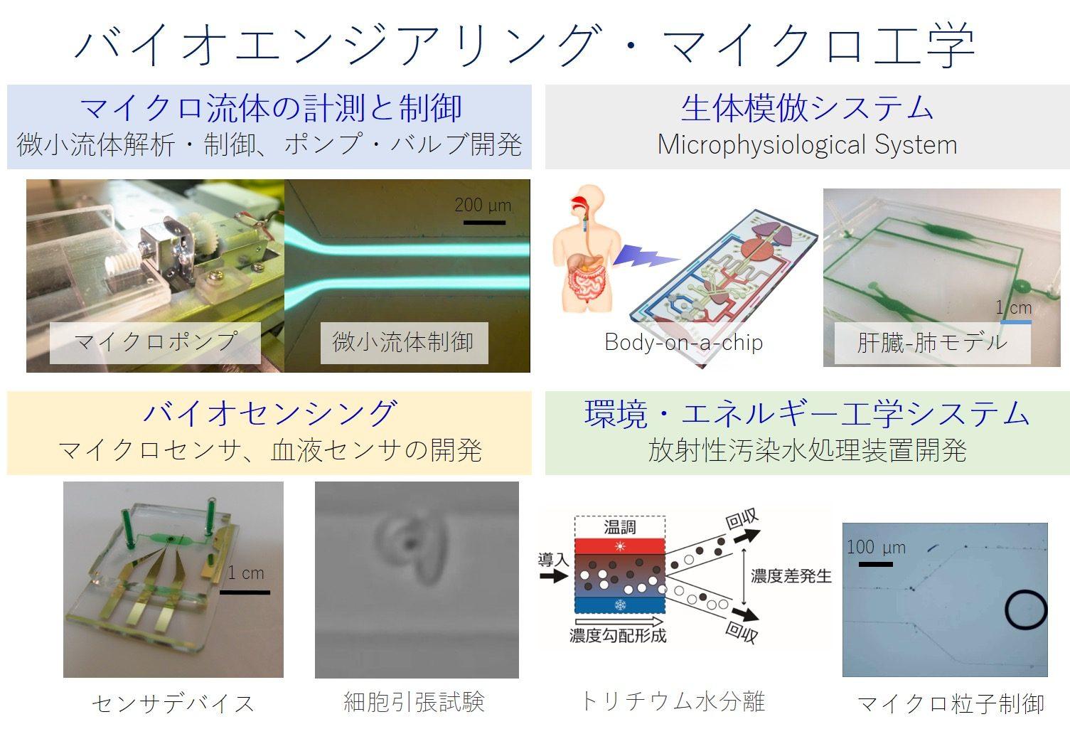 医療・創薬のための生体模倣システムの開発