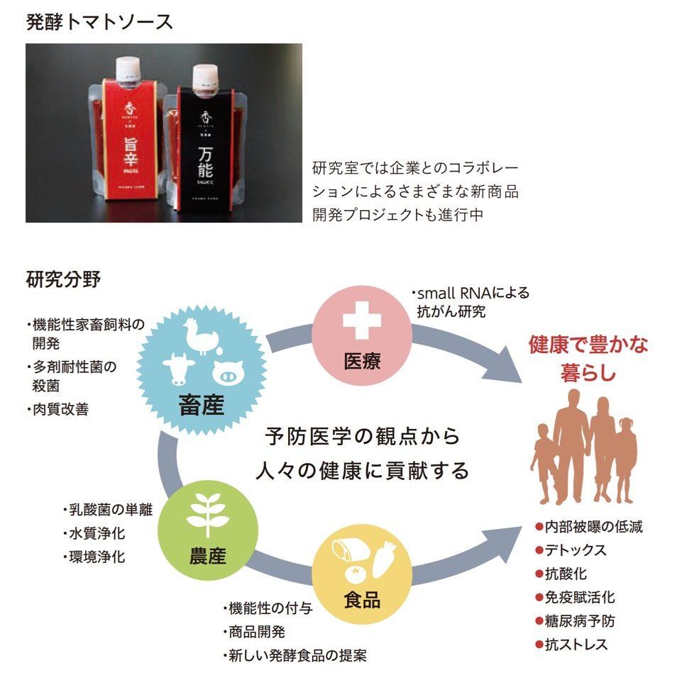 乳酸菌や発酵食品の機能性とその応用に関する研究