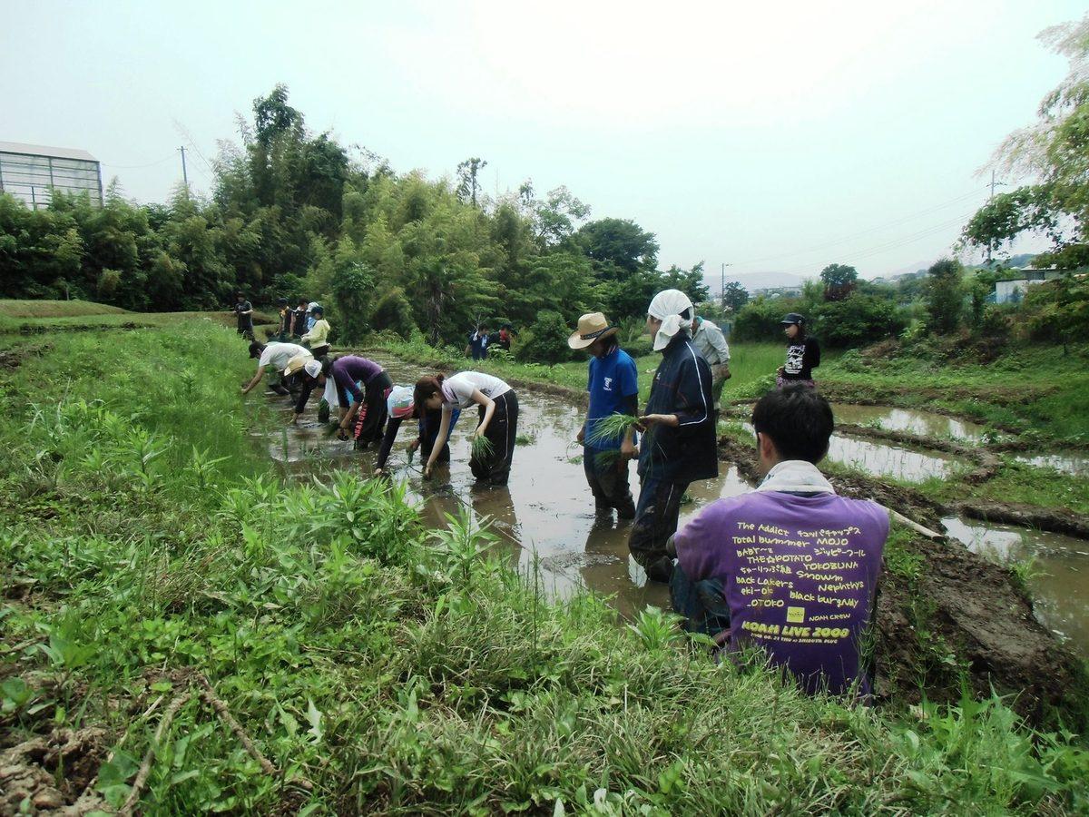 人間環境学科 自然環境課程の特色
