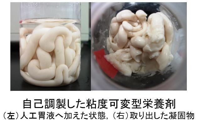 経口・経腸摂取のための半固形化・粘度可変型栄養剤の研究